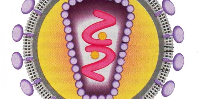 الوحدة 4 النشاط 9 : سبب فقدان المناعة المكتسبة (SIDA)