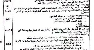 تصحيح بكالوريا 2015 – اختبار اللغة اللغة العربية شعب علمية